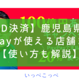 【ID決済】鹿児島県でPayPayが使える店舗まとめ【使い方も解説】