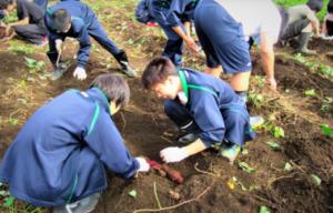 自然学園高等学校の国際農業コースが珍しいの画像