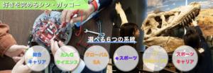 岡山理科大学附属高等学校の選べる6つの系統の画像
